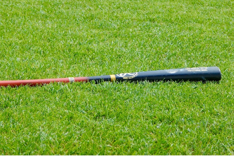 What is a Fungo Bat?