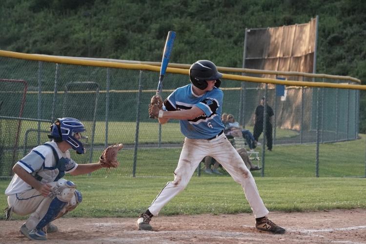 Cat 9 Baseball Bat