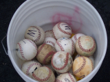 The 7 Best Baseball Bucket Bundles for Efficient Training Sessions