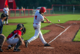 Best Birch Wood Baseball Bats – Reviews and Buying Guide