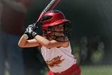 Top 10 Best Baseball Bats For Youth: USA Baseball bat in 2021
