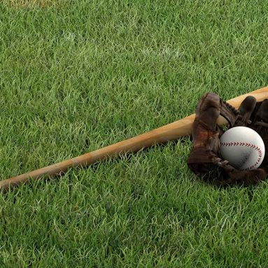 How to Clean a Wood Baseball Bat? Complete Guide